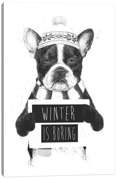 Winter Is Boring Canvas Art Print