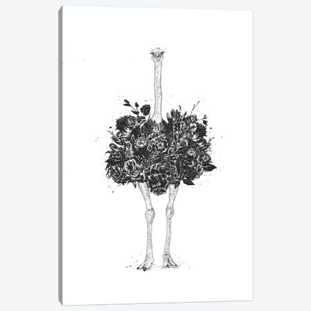 Floral Ostrich Canvas Print #BSI171} by Balazs Solti Canvas Art