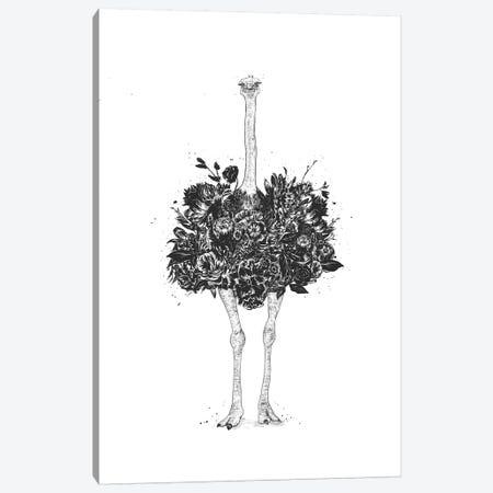 Floral Ostrich Canvas Print #BSI171} by Balazs Solti Canvas Art