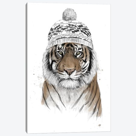 Siberian Tiger Canvas Print #BSI181} by Balazs Solti Art Print