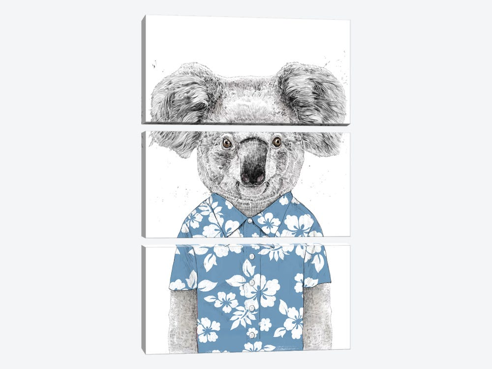 Summer Koala Blue by Balazs Solti 3-piece Canvas Print