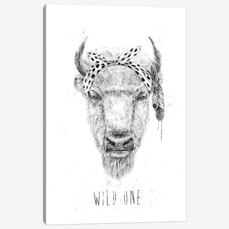 Wild One Canvas Print #BSI188} by Balazs Solti Canvas Art Print