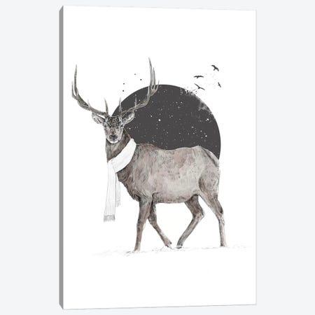 Winter Is All Around 2 Canvas Print #BSI189} by Balazs Solti Art Print