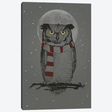 Winter Owl Canvas Print #BSI192} by Balazs Solti Canvas Artwork