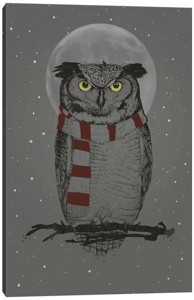 Winter Owl Canvas Art Print