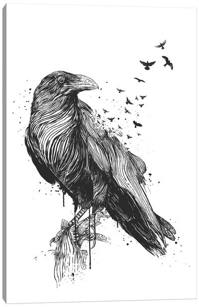 Born To Be Free In Black And White Canvas Art Print