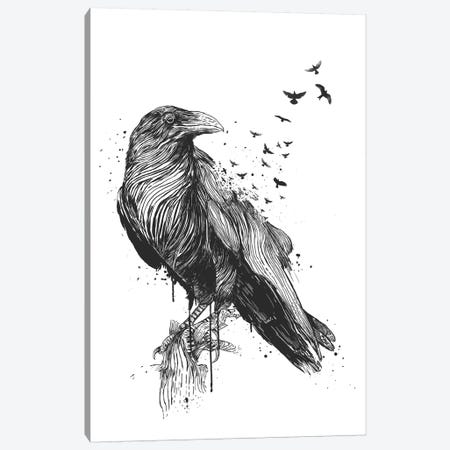 Born To Be Free In Black And White Canvas Print #BSI194} by Balazs Solti Canvas Art Print