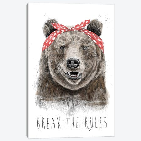 Break The Rules (In Color) Canvas Print #BSI195} by Balazs Solti Canvas Print