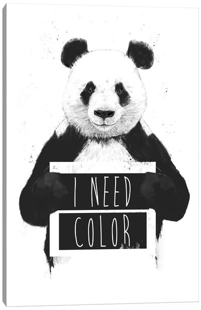 I Need Color Canvas Art Print