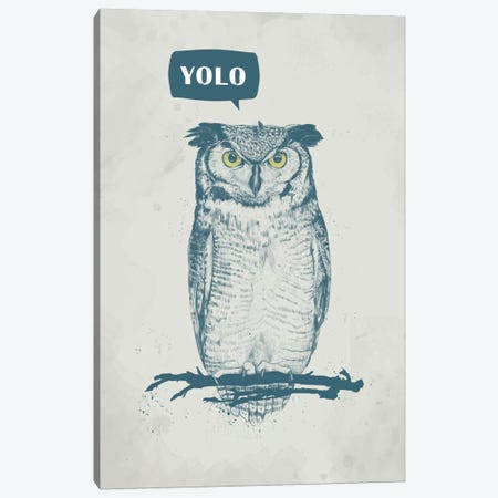Yolo Canvas Print #BSI19} by Balazs Solti Canvas Art
