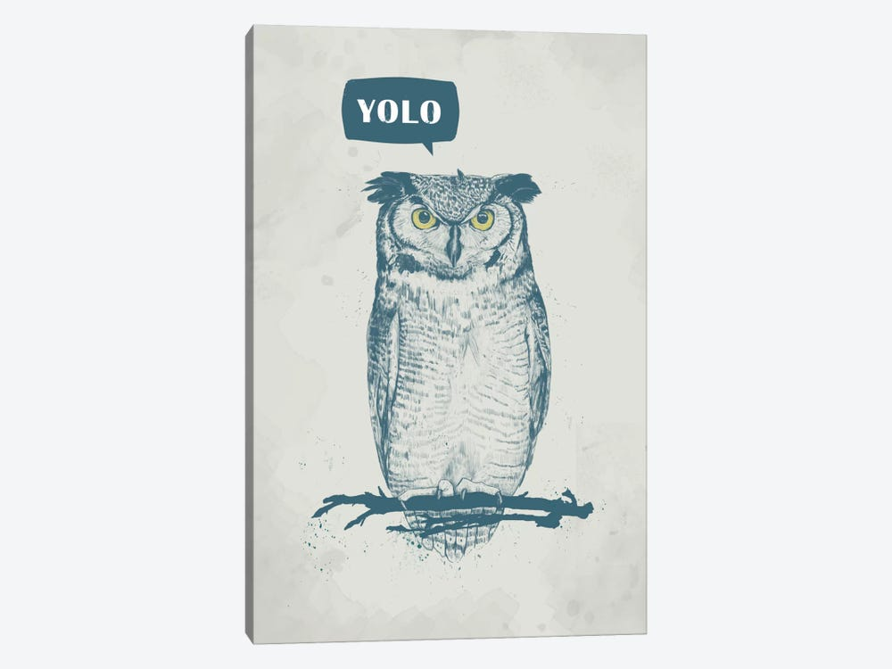Yolo by Balazs Solti 1-piece Canvas Wall Art