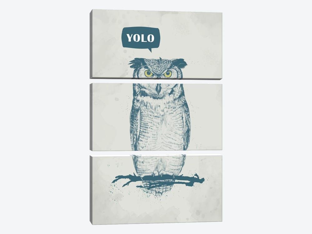 Yolo by Balazs Solti 3-piece Canvas Artwork