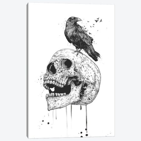 New Skull In Black And White Canvas Print #BSI200} by Balazs Solti Canvas Wall Art