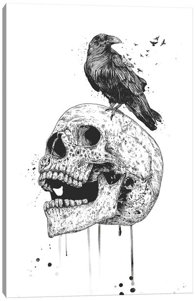 New Skull In Black And White Canvas Art Print