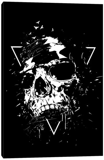 Skull X In Black And White Canvas Art Print