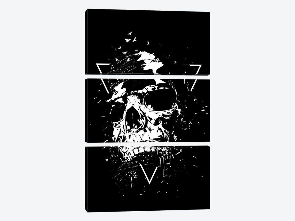 Skull X (Black And White) by Balazs Solti 3-piece Canvas Artwork