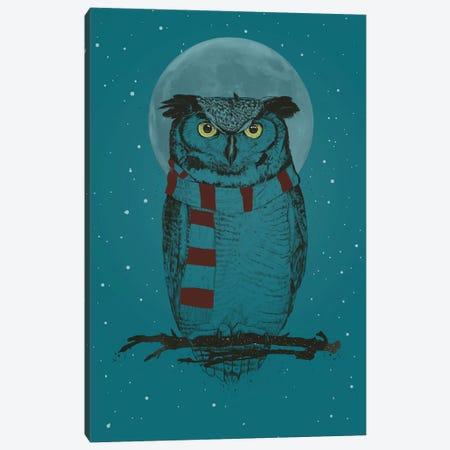 Winter Owl Ii Canvas Print #BSI213} by Balazs Solti Canvas Print
