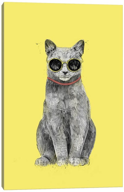 Summer Cat Canvas Art Print