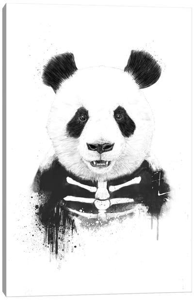 Zombie Panda Canvas Print #BSI22