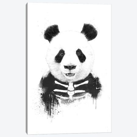 Zombie Panda Canvas Print #BSI22} by Balazs Solti Canvas Print