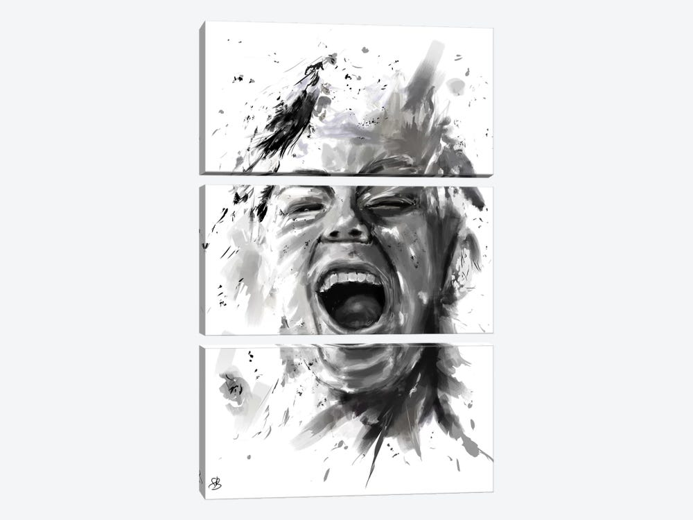Anger by Balazs Solti 3-piece Canvas Art