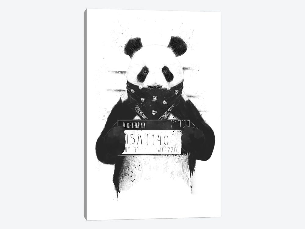 Bad Panda by Balazs Solti 1-piece Canvas Art