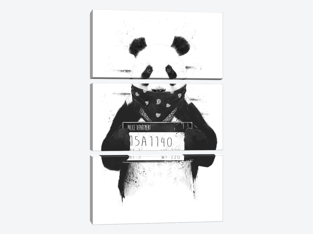 Bad Panda by Balazs Solti 3-piece Canvas Wall Art