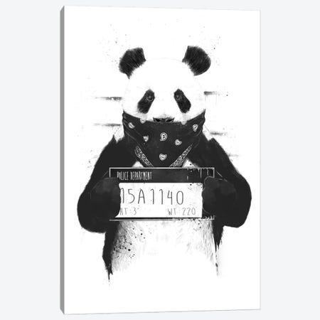 Bad Panda Canvas Print #BSI28} by Balazs Solti Canvas Print