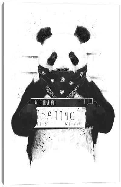Bad Panda Canvas Art Print