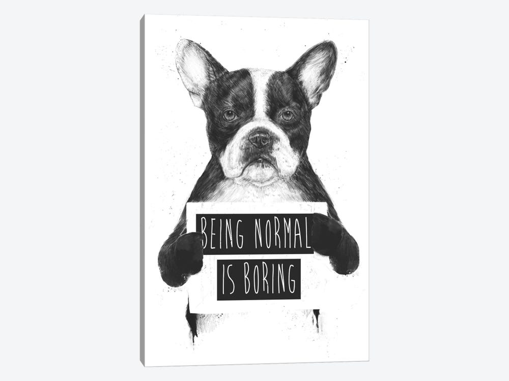 Being Normal Is Boring by Balazs Solti 1-piece Canvas Artwork