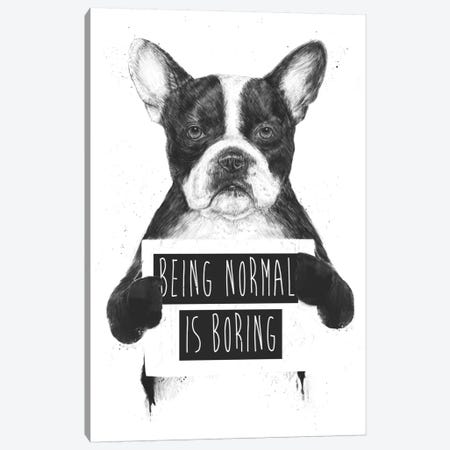 Being Normal Is Boring Canvas Print #BSI33} by Balazs Solti Canvas Art