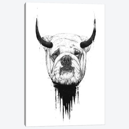Bulldog Canvas Print #BSI37} by Balazs Solti Canvas Art Print