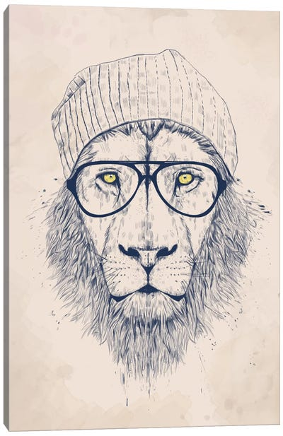 Cool Lion by Balazs Solti Canvas Print