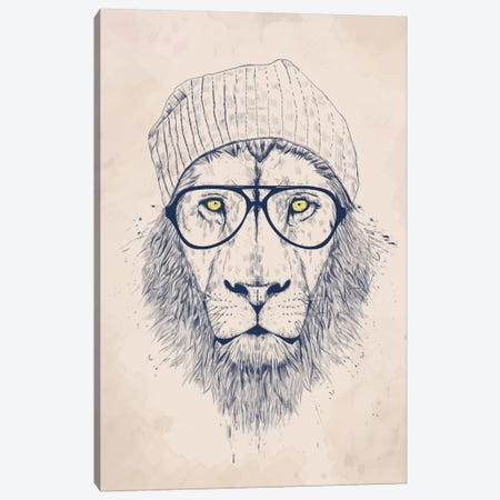 Cool Lion Canvas Print #BSI42} by Balazs Solti Canvas Print