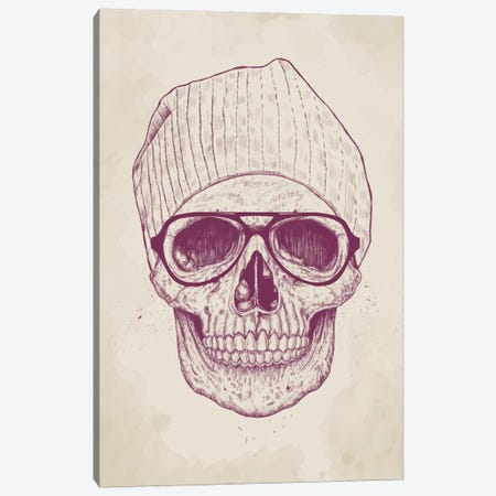 Cool Skull Canvas Print #BSI43} by Balazs Solti Canvas Art Print