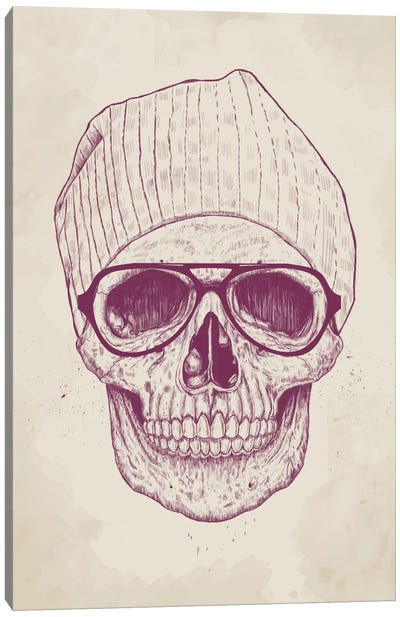 Cool Skull Canvas Print #BSI43