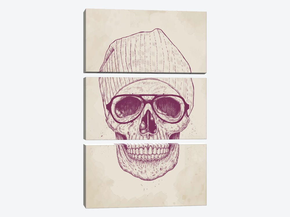 Cool Skull by Balazs Solti 3-piece Art Print