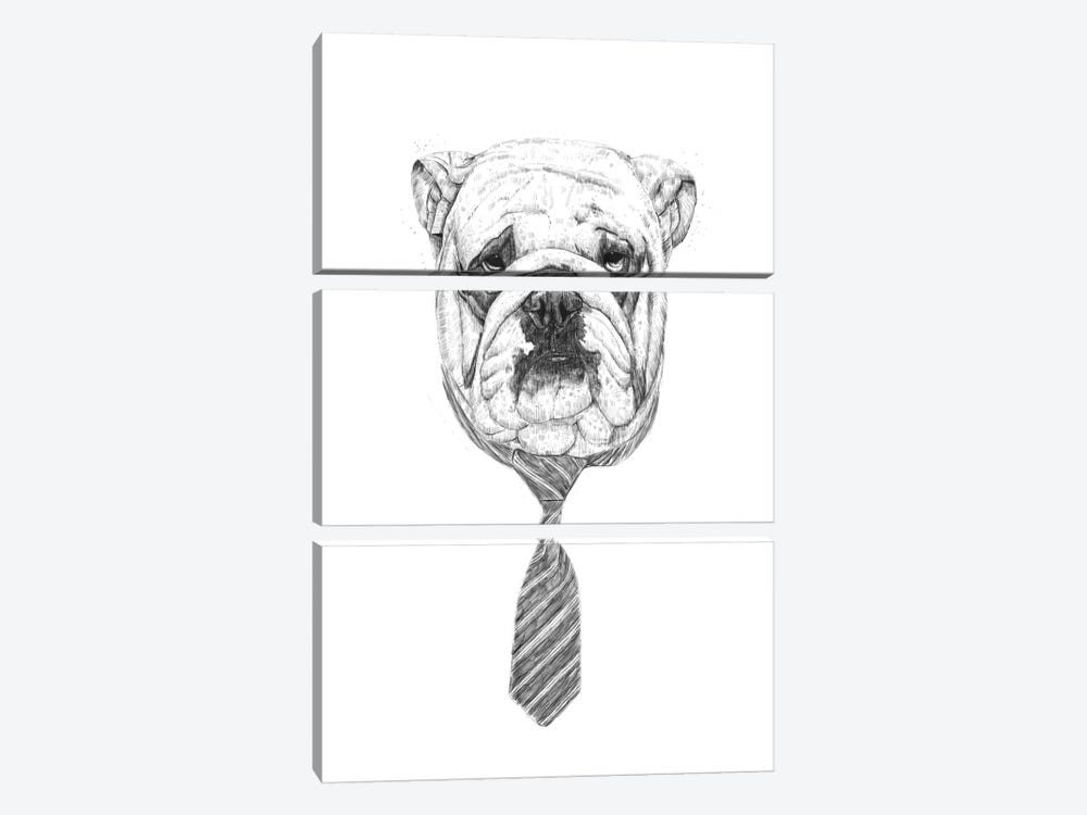 Cooldog 3-piece Canvas Art