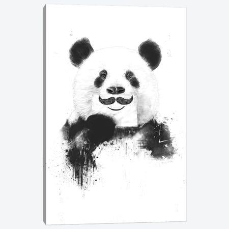 Funny Panda Canvas Print #BSI55} by Balazs Solti Art Print