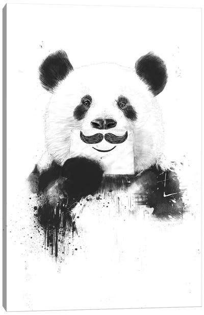 Funny Panda Canvas Print #BSI55