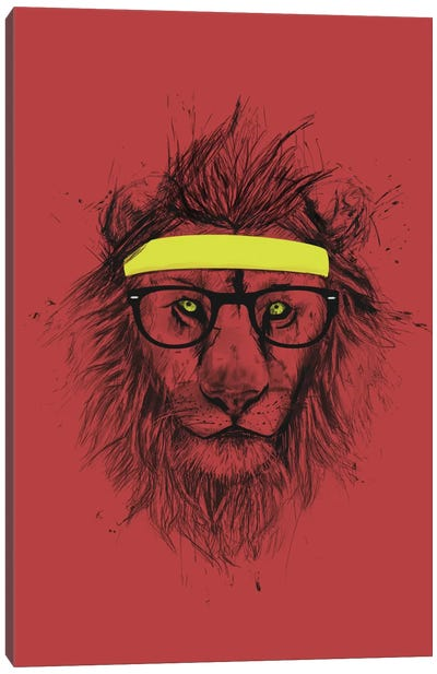 Hipster Lion (Red) Canvas Print #BSI62