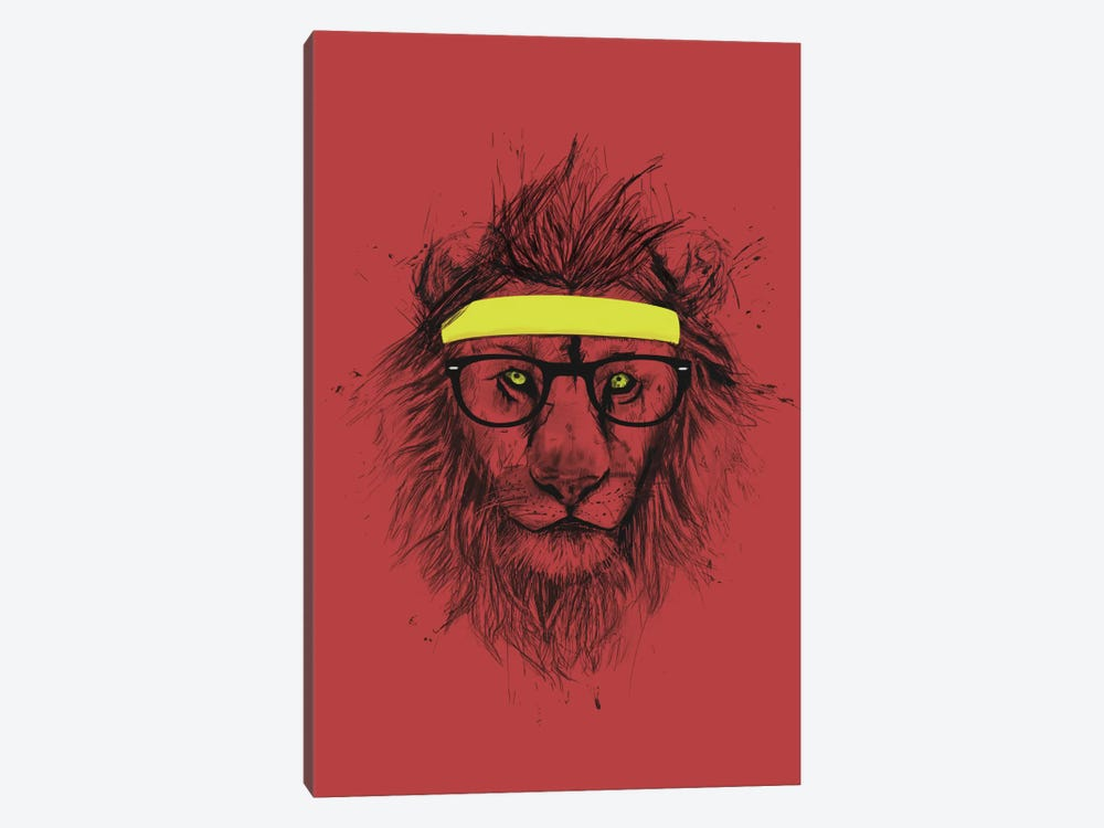 Hipster Lion (Red) by Balazs Solti 1-piece Canvas Artwork