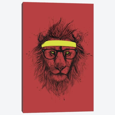 Hipster Lion (Red) Canvas Print #BSI62} by Balazs Solti Art Print