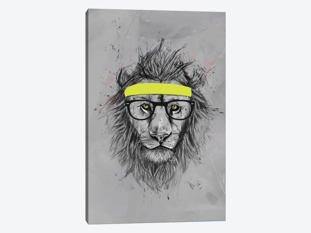 Hipster Lion by Balazs Solti 1-piece Canvas Print