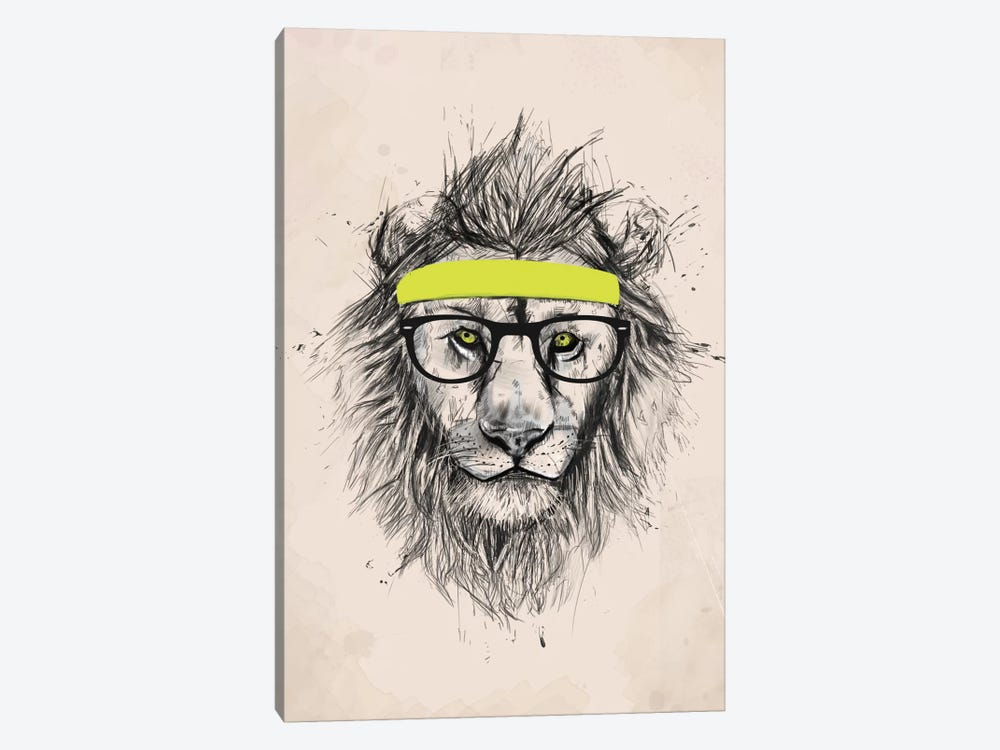 Hipster Lion (Light Version) by Balazs Solti 1-piece Canvas Art
