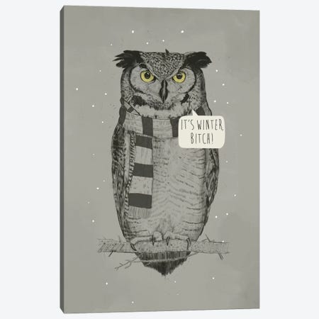 It's Winter, Bitch! Canvas Print #BSI69} by Balazs Solti Canvas Art Print