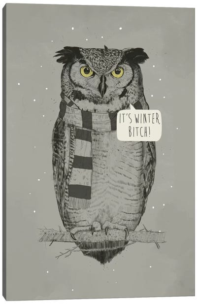 It's Winter, Bitch! Canvas Art Print