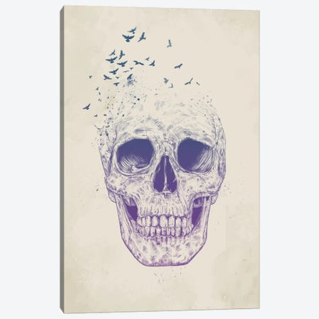 Let Them Fly Canvas Print #BSI73} by Balazs Solti Canvas Artwork