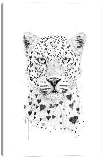 Lovely Leopard Canvas Art Print