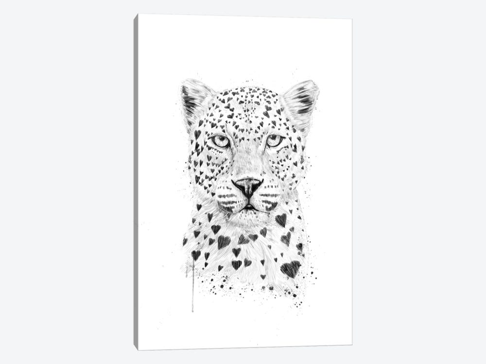 Lovely Leopard by Balazs Solti 1-piece Canvas Print